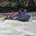 Wildwater 2015 (1)
